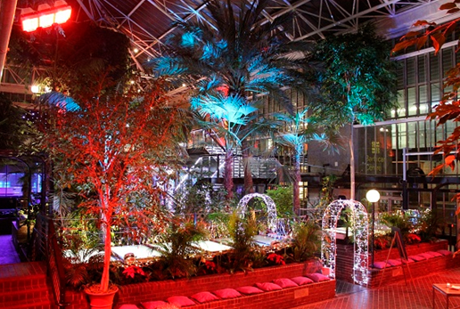 Barbican Summer Party London EC2, lights in conservatory and trees
