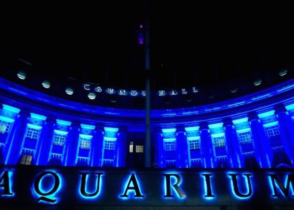 London Aquarium Christmas Party Venue SE1, stunning lit up venue