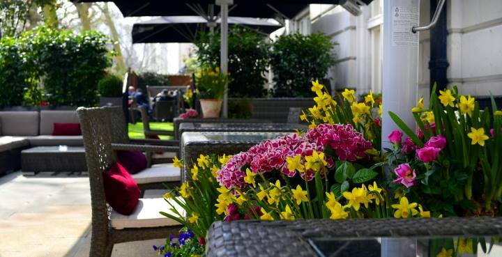 Royal Horseguards Hotel Summer Party SW1, the terrace with beautiful flowers