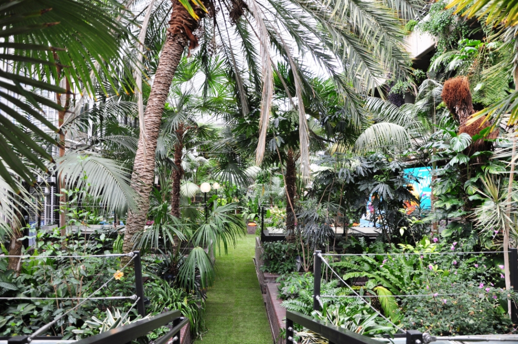 Barbican Summer Party London EC2, rainforest in a conservatory
