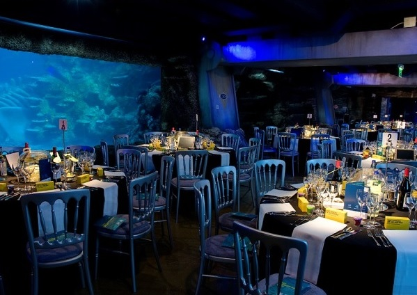 London Aquarium Shared Christmas Party SE1, seated dinner set infront of large fish tank, stunnin centre pieces on the tables