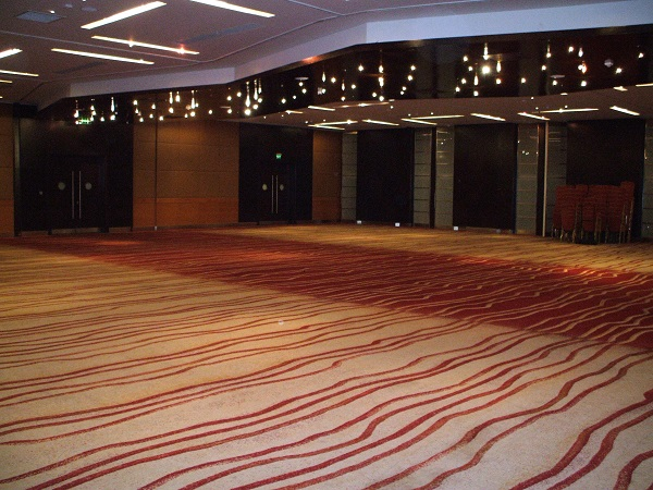 Park Plaza Riverbank Christmas Party SE1. large space for a standing reception