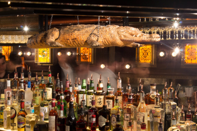 View of behind the bar wit array of spirits and hanging crocodile Botanist Broadgate Circle Venue Hire EC2