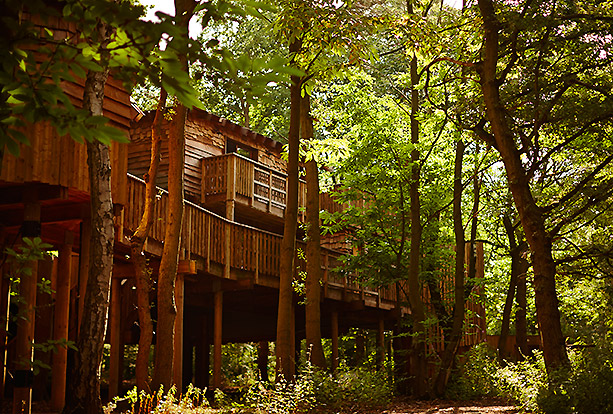 Centre Parcs Sherwood Forest Summer Party NG22
