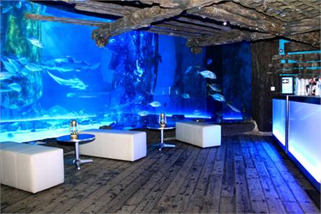 London Aquarium Shared Christmas Party SE1, receptionarea in front of a large fish tank to offer a unique feel to your party