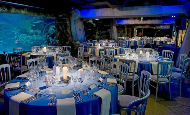 London Aquarium Shared Christmas Party SE1, Round tables laid for a seated dinner placed in front of large fish tank