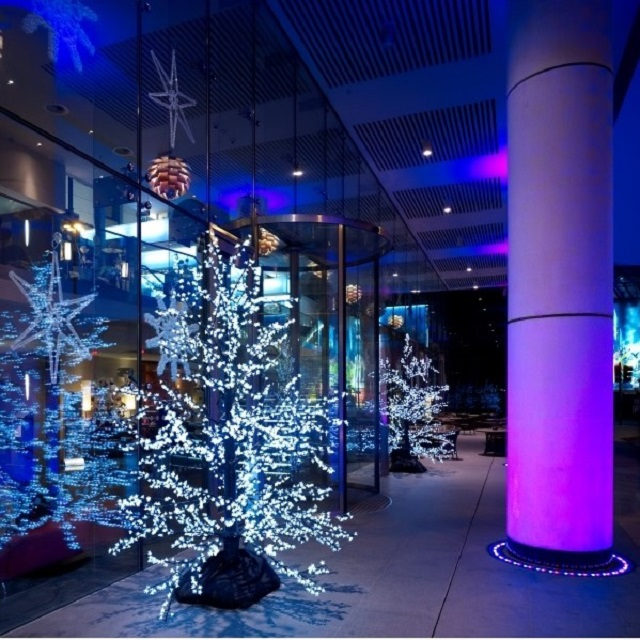 Park Plaza County Hall Christmas Party SE1. Festive feel with christmas tree lit up in venue large room.