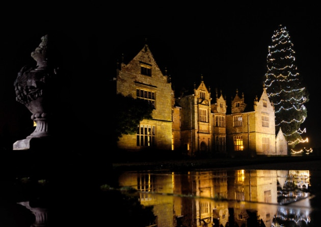 Exterior view of the venue with giant christmas tree Wakehurst Place Christmas Party RH17