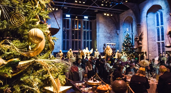 Warner Bros. Studio Tour London WD25- Christmas in the great hall, set out with festive christmas trees
